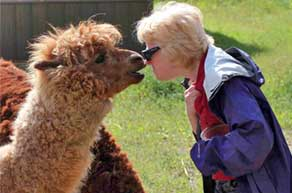 Hélèna Katz and Blue the alpaca